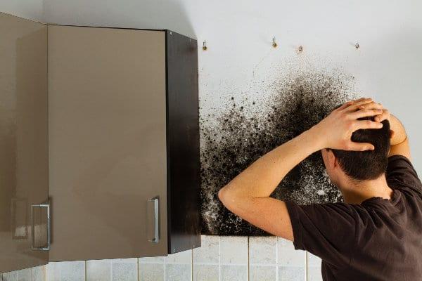 Comment se manifeste la présence d'humidité dans la maison