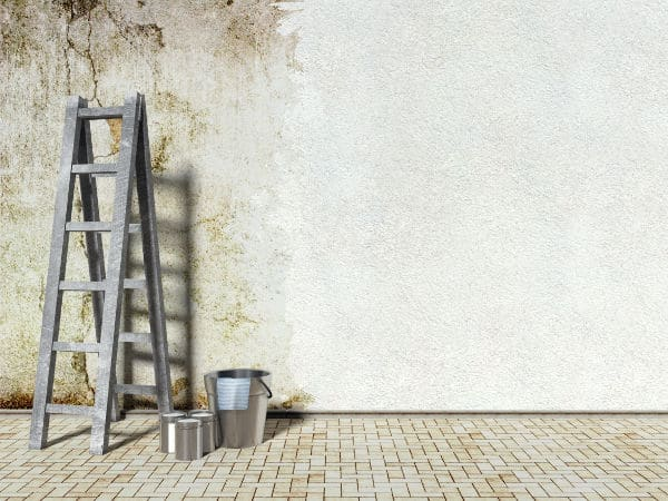 les traitements pour avoir une maison sans moisissure