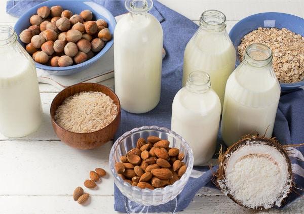 alternatives au lait de vache
