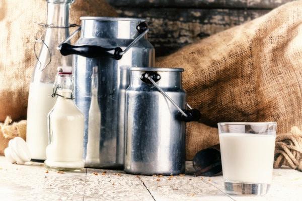les différents types de lait